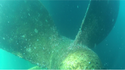 Underwater Inspections in lieu of Dry Dock (UWILD)